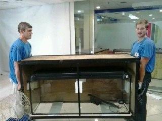 Перевезення акваріумів в Інтерсіті